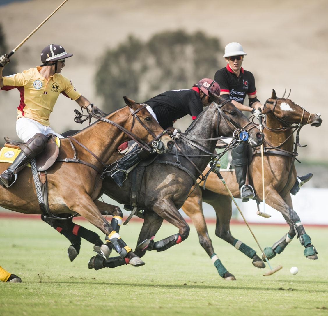 Polo International tournament. Photographs for the Lima Polo Club.